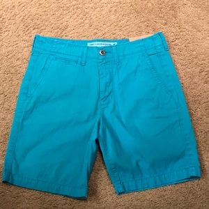 American Eagle Teal Shorts
